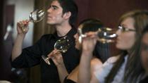Washington DC Wine-Tasting Tour by Pedicab