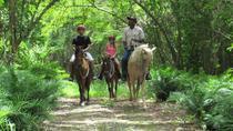 Countryside Horseback Riding at Scape Park, Punta Cana, Eco Tours