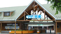 General Admission ticket to Mother Farm , Chiba, Attraction Tickets