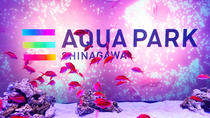 General Admission to Maxell Aqua Park Shinagawa, Tokyo, Attraction Tickets