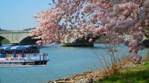Cherry Blossom and Monuments Cruise in Washington DC, Washington DC, City Tours