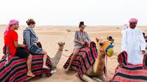 Dubai Desert 4x4 Safari with Quad Ride, Camel Ride, BBQ Dinner and Belly Dancing