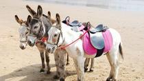 Agadir: 2-Hour Donkey Ride, Agadir, 4WD, ATV & Off-Road Tours