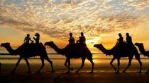 Agadir: Sunset Camel Ride With Dinner, Agadir, Nature & Wildlife