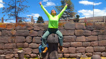 Half-Day Chucuito Tour from Puno, Puno, Cultural Tours