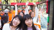 Hop-on-Hop-off-Bustour durch Taipeh, Taipeh, Hop-on Hop-off-Touren