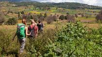 Nyaung Shwe Half Day Trekking, Nyaungshwe, 4WD, ATV & Off-Road Tours
