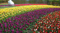 Private Tour: Keukenhof Gärten Tagesausflug von Brüssel, Brussels, Private Sightseeing Tours