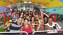 Aruba Pub Crawl, Aruba, Snorkeling