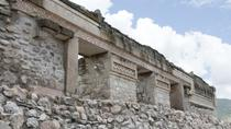 Mitla and Santa Maria del Tule Sightseeing Tour from Oaxaca, Oaxaca, Half-day Tours