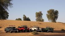 Desert Experience: Dinner and Emirati Activities with Vintage Land Rover Transport from Dubai