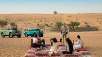 Falconry Experience and Wildlife Tour in Dubai, Dubai, Nature & Wildlife