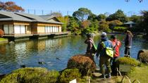 Tokyo by Bike: Edogawa Including Sea Life Aquarium and Kasai Rinkai Park, Tokyo, null