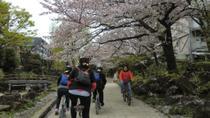 Tokyo by Bike: Skytree, Kiyosumi Garden and Sumo Stadium, Tokyo, Cultural Tours