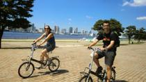 Tokyo by Bike: Tsukiji Market and Odaiba Including Tokyo Bay Cruise, Tokyo, Helicopter Tours