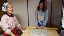 Snow Monkey and Historical Onsen DayTrip Including Making Soba Noodle for Lunch