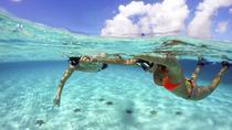 COZUMEL SNORKEL TOUR: CORAL REEFS, EL CIELO & PLAYA MIA, Cozumel, Snorkeling