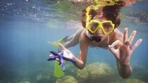 Cozumel Snorkel Tour from Cancun: Coral Reefs and Playa Mia Beach Park, Cancun, Day Cruises