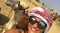 2 hour camel ride around Giza pyramids gate, Cairo, Nature & Wildlife