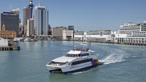 Auckland Harbour Sightseeing Cruise, Auckland, Helicopter Tours