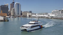 Auckland Harbour Sightseeing Cruise with Round-Trip Devonport Ferry Ticket, Auckland