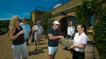 Waiheke Island Wine Tasting Tour from Auckland, Auckland, Wine Tasting & Winery Tours