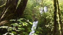 Hiking and Biking: Columbia Gorge Hidden Waterfalls, Portland, Hiking & Camping