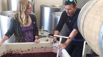 Small Wineries of the Willamette Valley Tour, Portland, Wine Tasting & Winery Tours