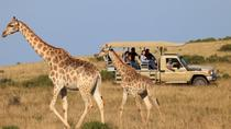 4-Day 3-Night Kruger National Park Safari, Johannesburg, Attraction Tickets