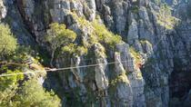Cape Canopy (Ziplining) and Coffee Roasting Tour, Cape Town, Coffee & Tea Tours