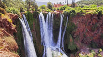 Day Trip to Ouzoud Falls from Marrakech, Marrakech, Day Trips