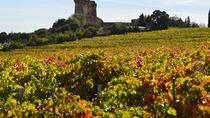 5 hours Châteauneuf-du-Pape Visit and Tasting in 5 Cellars with Wine Specialist, Provence,...