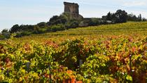 Châteauneuf-du-Pape Visit and Tasting in 5 Cellars with Wine Specialist, Avignon, Food Tours