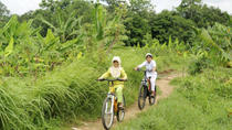 Private Bike Tour of Bongkasa Village, Bali, Bike & Mountain Bike Tours