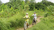 Private Bike Tour of Bongkasa Village, Bali, Day Trips
