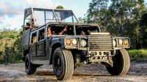 Kuranda Rainforest Night Adventure Tour by Hummer, Cairns & the Tropical North, Attraction ...