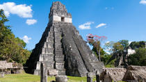 Tikal Day Trip from San Ignacio, San Ignacio, Archaeology Tours