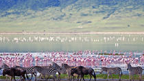 3-Day Safari Tour to Ngorongoro Crater from Arusha , Arusha, Multi-day Tours