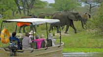 4-Day Selous Game Reserve Safari Tour from Dar-Es-Salaam, Dar es Salaam, Private Sightseeing Tours