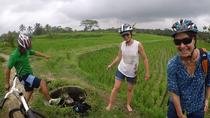 Best Culture Bike Tour in Bali, Bali, Bike & Mountain Bike Tours