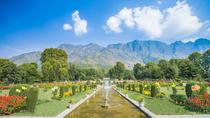 A Visual Overload: The City of Srinagar, Jammu and Kashmir, Private Sightseeing Tours