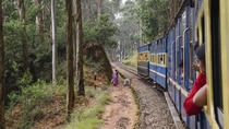 Explore Ooty in a Toy Train, Coimbatore, Private Sightseeing Tours