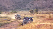 Jeep Safari of Jaipur countryside, Jaipur, 4WD, ATV & Off-Road Tours