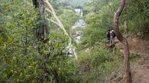 Munnar: A Day Trek and Lunch, Munnar, Hiking & Camping