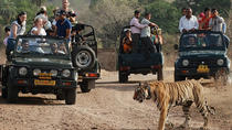 Golden Triangle Tour with Ranthambore National Park, New Delhi, Attraction Tickets