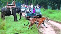 Wildlife Tour Jim Corbett National Park 2 Nights 3 Days, New Delhi, Attraction Tickets
