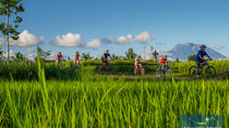 Bali Eco & Educational Cycling Tour, Kuta, 4WD, ATV & Off-Road Tours