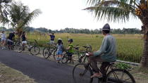 Kaba-Kaba Reasons for Harmony Cycling Tour, Bali, Bike & Mountain Bike Tours