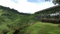 2 Days 1 Night Cameron Highlands Tour - Nature & Forest, Kuala Lumpur, Multi-day Tours