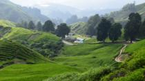 Cameron Highlands, Garden of Nature Full Day Tour, Kuala Lumpur, Multi-day Tours